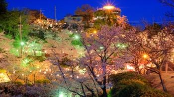 Kurashki_city_at_night_during_Hanami_(Sakura_blooming_season)._Okayama_Prefecture._Japan-2.jpg